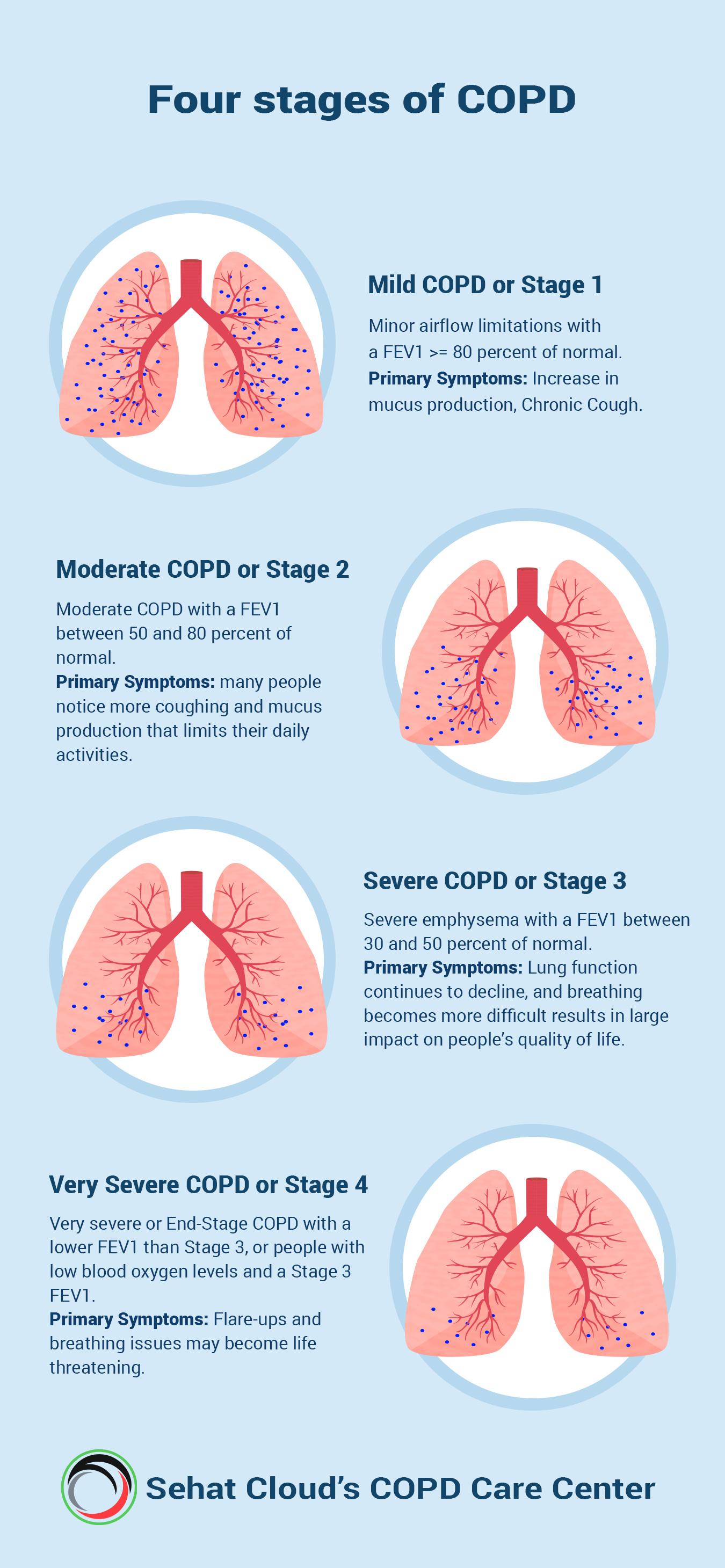 Coronavirus Covid 19 Updates